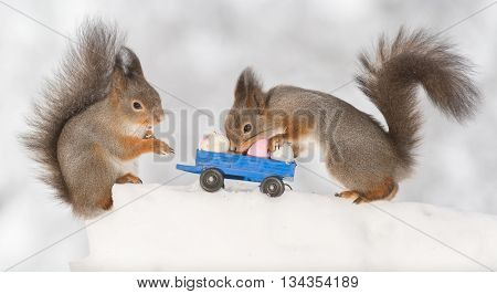 red squirrels with lorry and eggs on ice