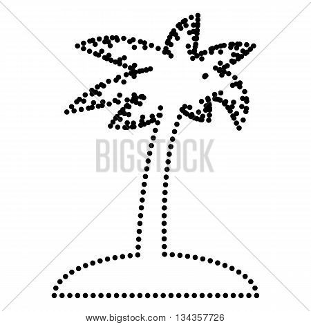 Coconut palm tree sign. Dot style or bullet style icon on white.