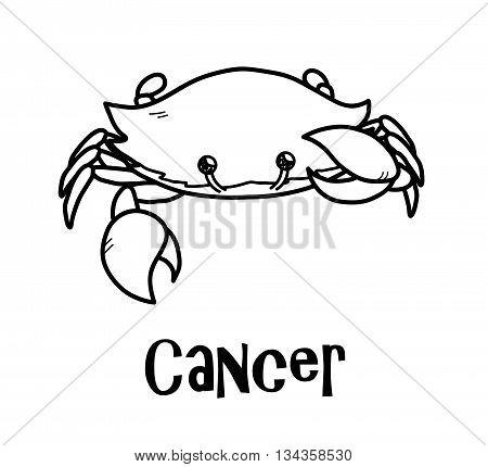 Cancer Zodiac, a hand drawn vector cartoon doodle illustration of Cancer  zodiac, The Crab.