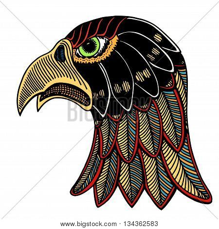Color Eagle Head