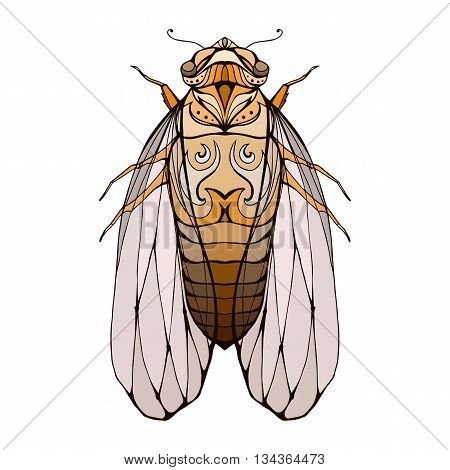 Illustration of colorful cicada with boho pattern. Vector element for coloring prints for T-shirts tattoo and a sketch for your creativity