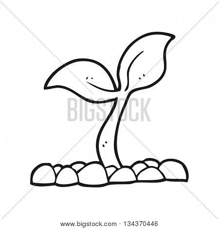 freehand drawn black and white cartoon seedling