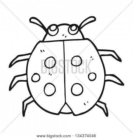 freehand drawn black and white cartoon ladybug