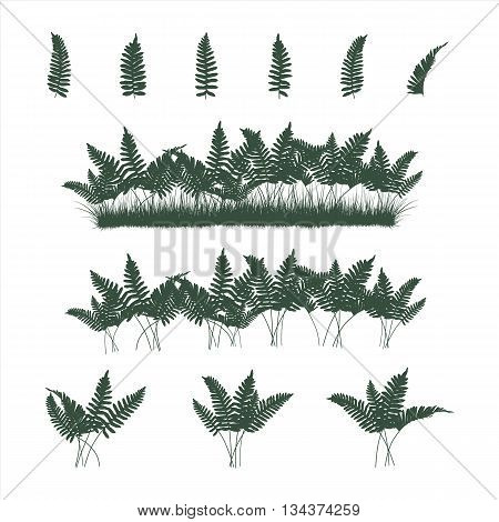 Set of ferns and grass in flat colors