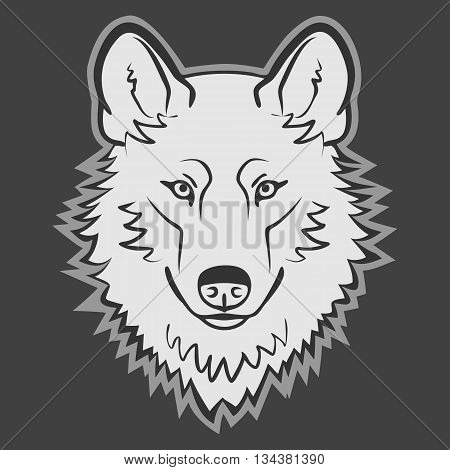 Wolf Logo Mascot Emblem vector. Wild wolf head.