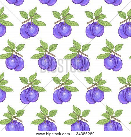 Vector seamless pattern. Branches with leaves and plums on a white background. Illustration for design packaging paper wallpaper fabrics textiles.