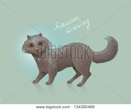 Vector raccoon. Sketch of fantastic animal. Unusual or exotic pet. Fantasy mascot suit for website playing card etc.