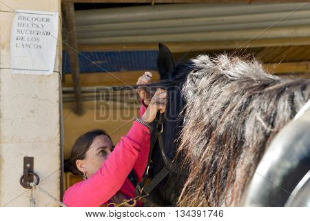 Brunette woman putting on a horse halter