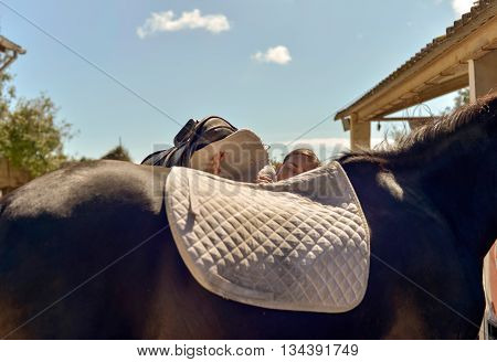 Woman Doing Saddle On The Back Of A Horse