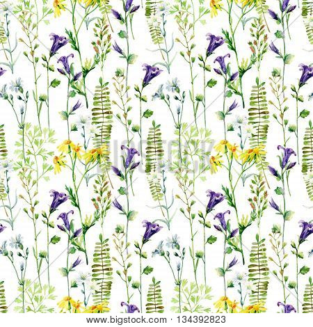 Watercolor meadow flowers seamless pattern. Watercolor wild bellflowers daisy and herbs background. Hand painted illustration