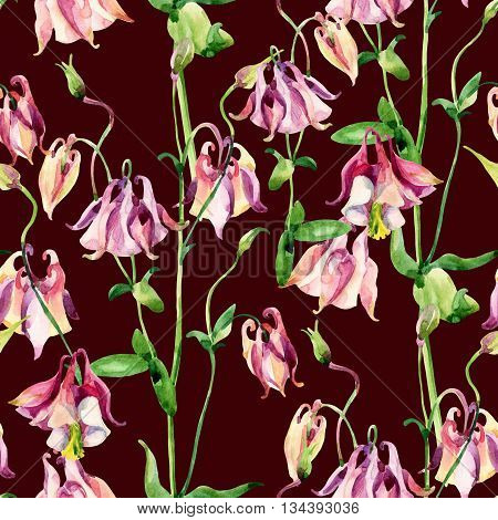 Watercolor meadow bellflowers seamless pattern. Watercolor wild columbine flowers on brown background. Hand painted illustration