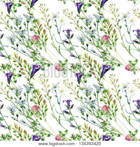 Watercolor wild flowers seamless pattern. Bell flower clover weeds and meadow herbs. Watercolor wild field background. Hand painted floral illustration