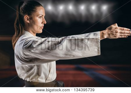 Female fighter performing karate stance against view of a playing field indoor