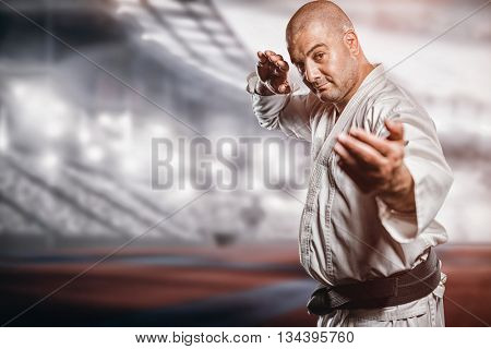 Fighter performing karate stance against composite image of american stadium
