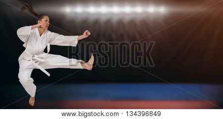 Fighter performing karate stance against composite image of playing field indoor