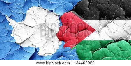 antarctica flag with Palestine flag on a grunge cracked wall