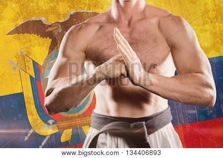 Fighter performing hand salute against ecuador flag in grunge effect