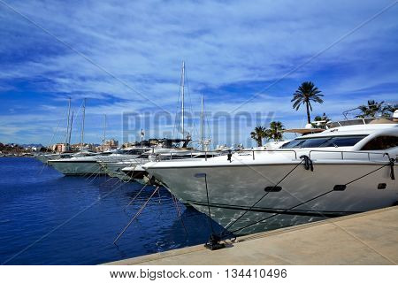 Denia port Marina in Mediterranean sea of Alicante Spain