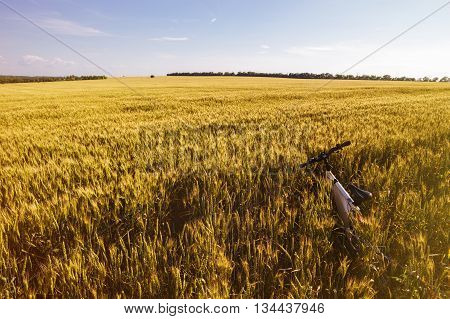 Summer outdoor photo e-bike in gold wheat field.