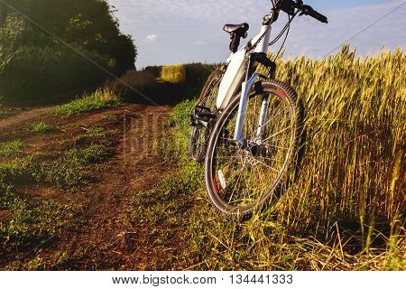 Mountain bicycle at sunny day on the dirt road.