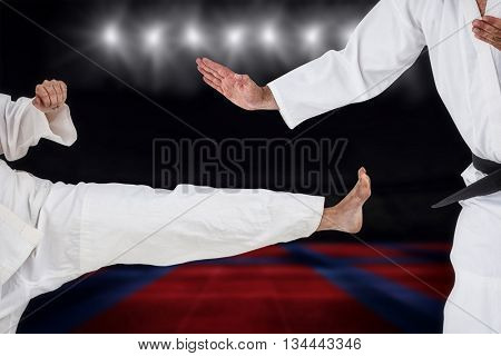 Fighter performing karate stance against view of a playing field indoor
