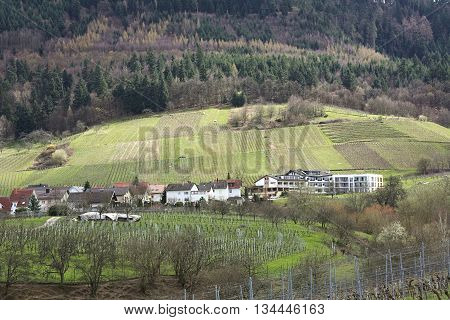View over vineyards and the town of Neuweier Baden-Wurttemberg Germany.