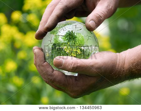 Men's hands gently hold the ball clear. Natural background