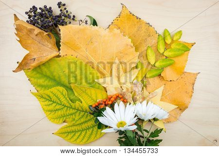A Bouquet Of Yellow, Green Autumn Leaves, Flowers, Berries And Seeds.