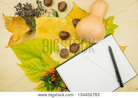 A Bouquet Of Yellow, Green Autumn Leaves With Blank Notebook And Pen
