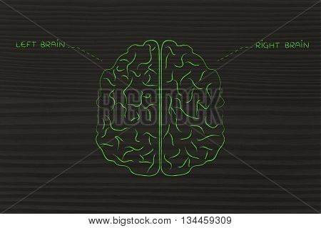 Left And Right Brain Illustration