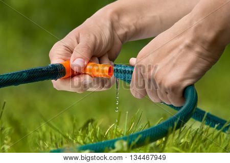 hands connected garden hose for watering lawn or garden