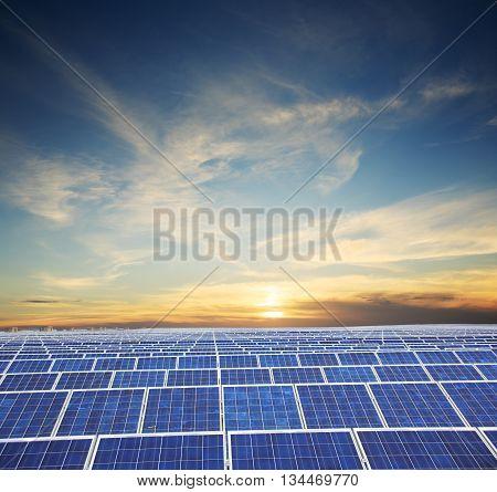 Field of solar panels with orange sunset's sky