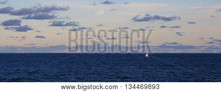 Sailing boat and vastness of the Pacific ocean. Evening scene in Sydney.