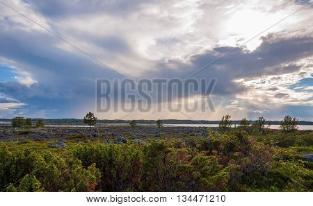 Light making its way in tundra in the archipelago Solovki in Russia.