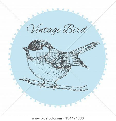 bird on a branch with flowers painted by hand. vintage card with a bird. Vector illustration. Hand drawn bird on sacura branch