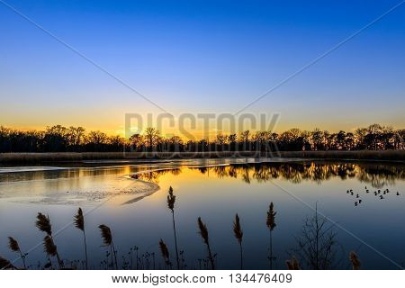 Sunset on an icy Maryland pond near the Chesapeake Bay in Winter