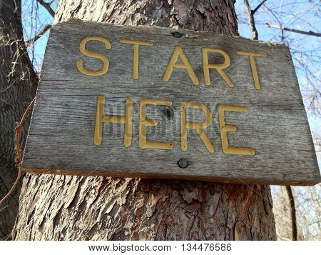 Wooden start here sign in a tree.