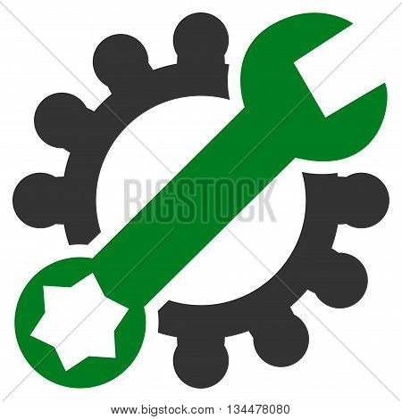 System Setup vector icon. Style is bicolor flat icon symbol, green and gray colors, white background.