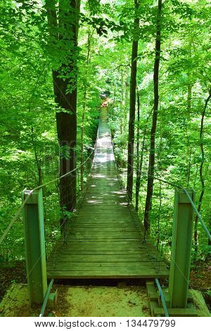Pedestrian Suspension Bridge surrounded by a lush green forest taken at Tims Ford State Park, TN