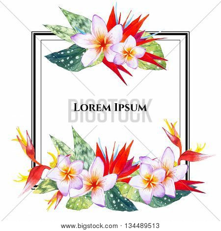 Floral illustration with tropical plants on white background. Composition with plumeria, strelitzia, palm and begonia leaves. Square frame.