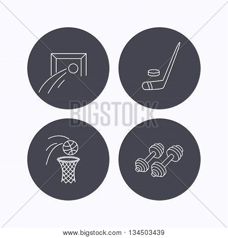 Football, ice hockey and fitness sport icons. Basketball linear sign. Flat icons in circle buttons on white background. Vector