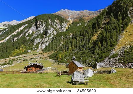 The mountain slopes are covered with thick alpine valley pine forest. On the picturesque glade is farm