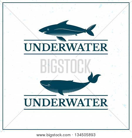 Underwater lettering with big whale and shark, oceanarium logo, vector illustration