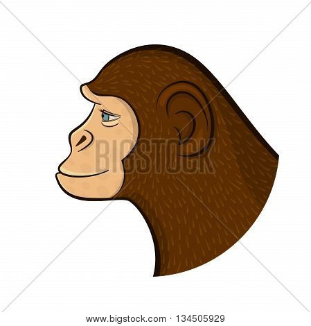 Colorful monkey hand in profile, cartoon vector illustration in doodle style