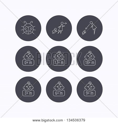 Infant child, ladybug and toddler baby icons. 0-18 months child linear signs. Unattended, parents supervision icons. Flat icons in circle buttons on white background. Vector