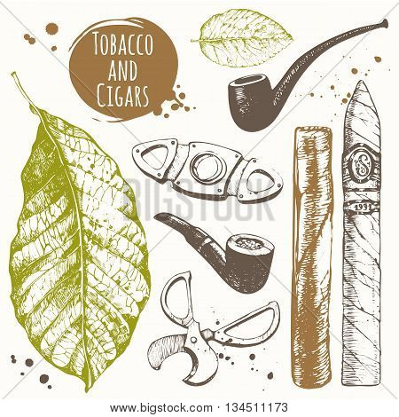 Vector illustration with cigars, pipes, guillotines for cigars, leaf tobacco. Classical smoking set.