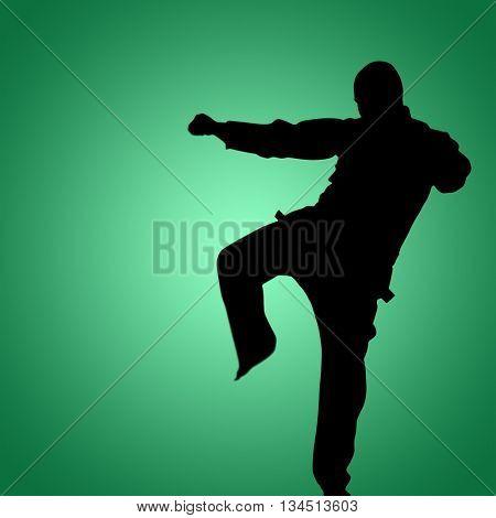 Fighter performing karate stance against green vignette