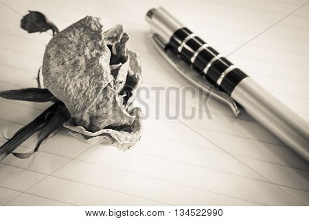 Dried rose and ball pen lay on line paper selective focus (vintage effect)