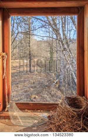 bird nest in a house wirh broken window with view to the outside