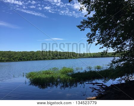 A peaceful image of Burke Lake, in Northern Virginia. Photo taken on June 14, 2016.